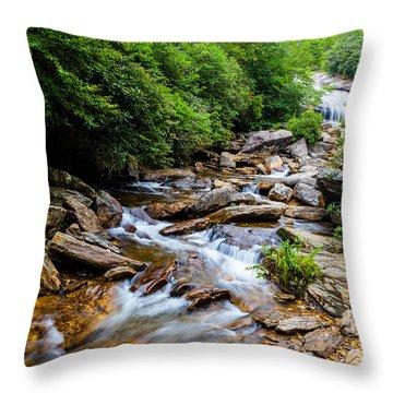 Lower Graveyard Falls Throw Pillow