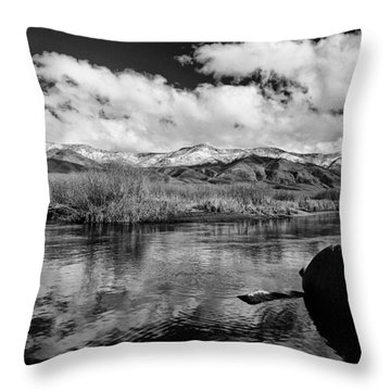 Lower Owens River Throw Pillow by Cat Connor
