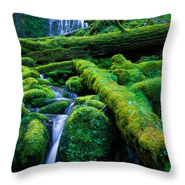 Lower Proxy Falls Throw Pillow by Inge Johnsson