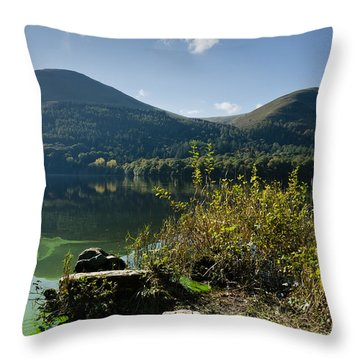 Loweswater Algal Bloom Throw Pillow