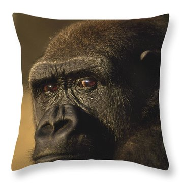 Lowland Gorilla Throw Pillow by Frans Lanting MINT Images