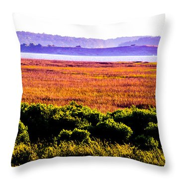 Lowland Light  Throw Pillow