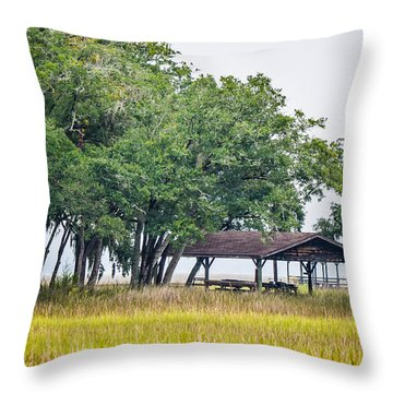Lowland Picnic Place  Throw Pillow
