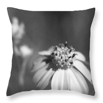 Throw Pillow featuring the photograph Loxahatchee Flower by Bradley R Youngberg