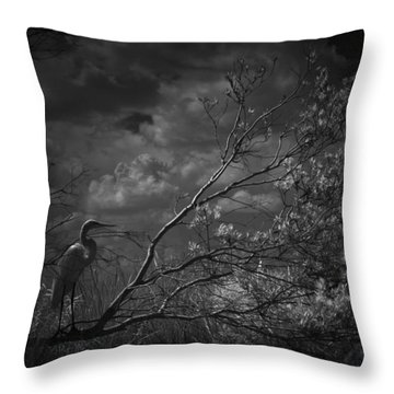 Loxahatchee Heron At Sunset Throw Pillow