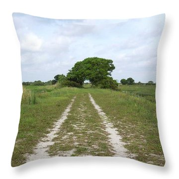 Loxahatchee Wildlife Refuge Throw Pillow