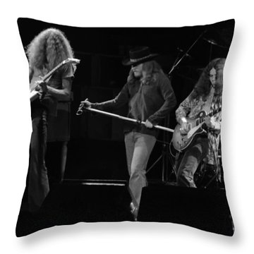 Ls Spo #17 Crop 2 Throw Pillow
