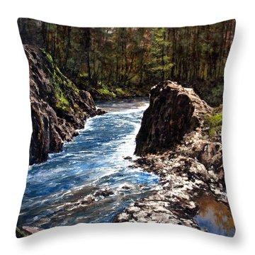 Lucia Falls Downstream Throw Pillow