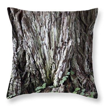 Lucky Tree Throw Pillow by Amanda Barcon