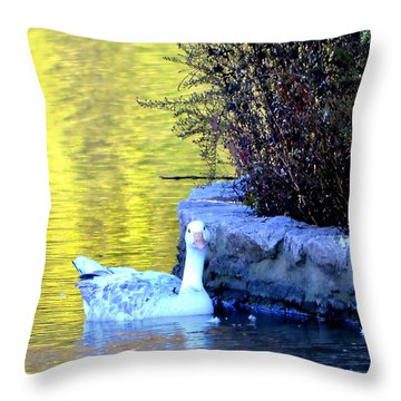 Throw Pillow featuring the photograph Lucy by Deena Stoddard