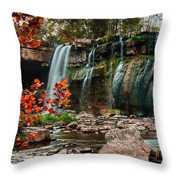 Ludlowville Falls Throw Pillow