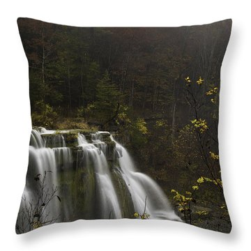 Ludlowville Falls In Autumn I Throw Pillow
