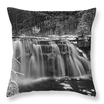 Ludlowville Falls In Winter I Throw Pillow