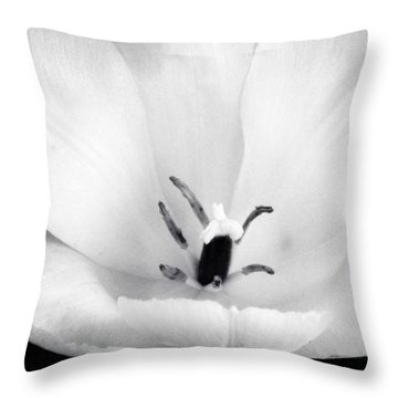 Luminance Throw Pillow by Susan Kinney