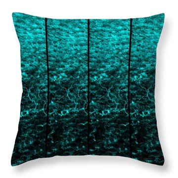 Throw Pillow featuring the photograph Luminescence 1a by Darla Wood