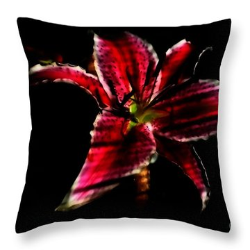 Throw Pillow featuring the photograph Luminet Darkness by Jessica Shelton