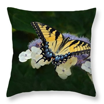 Luminous Butterfly On Lacecap Hydrangea Throw Pillow by Byron Varvarigos