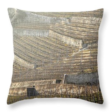 Luminous Lavaux Vineyards  Throw Pillow by Colleen Williams