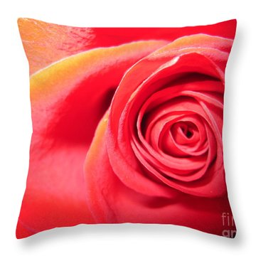 Luminous Red Rose 1 Throw Pillow