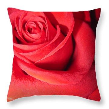 Luminous Red Rose 6 Throw Pillow
