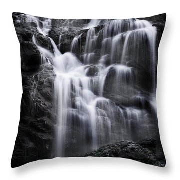 Luminous Waters Throw Pillow by Janie Johnson