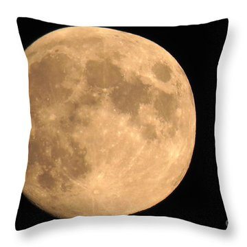 Lunar Mood Throw Pillow by Mary Mikawoz