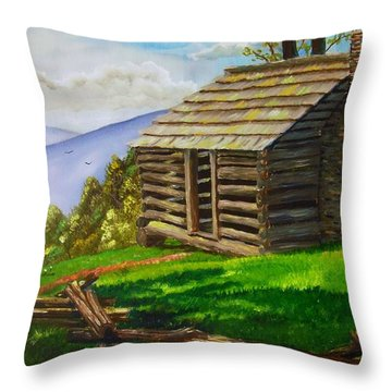 Lunch At An Old Cabin In The Blue Ridge Throw Pillow