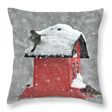 Throw Pillow featuring the photograph Lunch In A Snow Storm by Lila Fisher-Wenzel