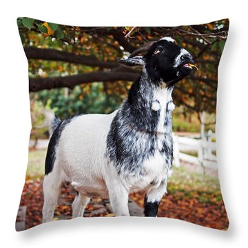Lunch With Goat Throw Pillow