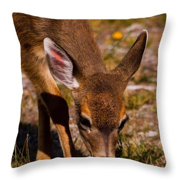Lunchtime In The Forest Throw Pillow by Jordan Blackstone