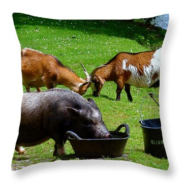 Lunchtime Throw Pillow