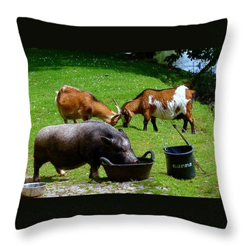 Lunchtime Throw Pillow by Rona Black