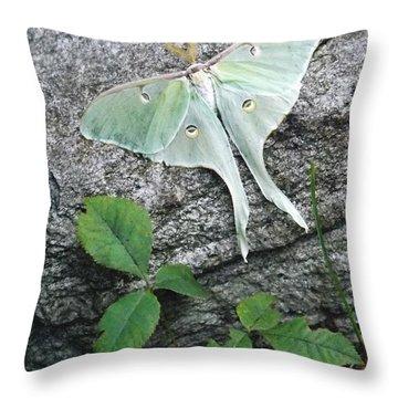 Luner Rock Throw Pillow