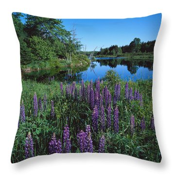 Lupin And Lake Throw Pillow
