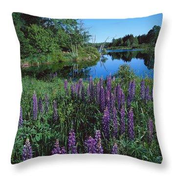 Lupin And Lake-v Throw Pillow
