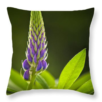 Lupin Bud Throw Pillow