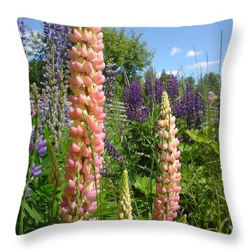 Throw Pillow featuring the photograph Lupin Summer by Martin Howard
