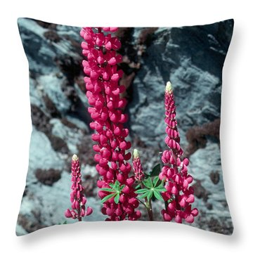 Lupine 1 Throw Pillow