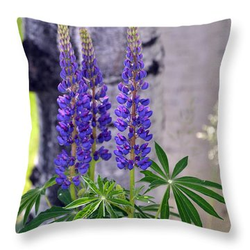 Throw Pillow featuring the photograph Lupine by Dorrene BrownButterfield