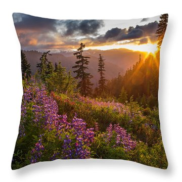 Lupine Meadows Sunstar Throw Pillow by Mike Reid