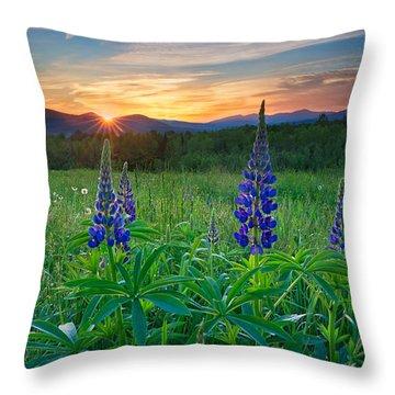 Lupine Sunrise Throw Pillow