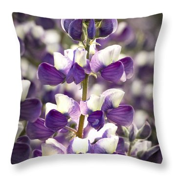 Throw Pillow featuring the photograph Lupine Wildflowers by Sonya Lang
