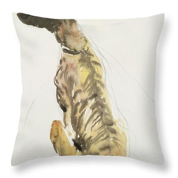 Lurcher Sitting Throw Pillow by Lucy Willis