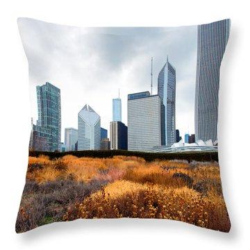 Lurie Gardens Winter Throw Pillow