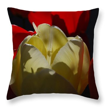 Throw Pillow featuring the photograph Lurking Shadow by Jani Freimann
