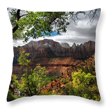 Throw Pillow featuring the photograph Luscious View by Barbara Manis