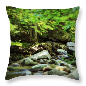 Lush Throw Pillow