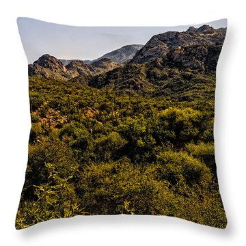 Lush Foothills No.1 Throw Pillow
