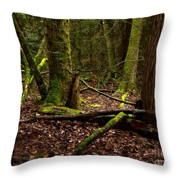Lush Green Forest Throw Pillow by Mary Mikawoz