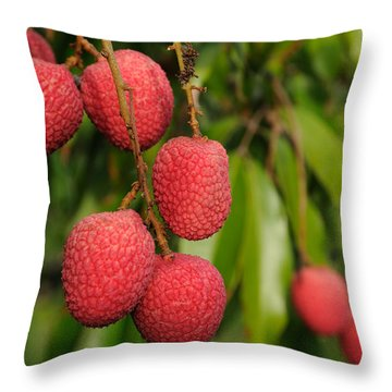 Throw Pillow featuring the photograph Lychee Fruit On Tree by Bradford Martin
